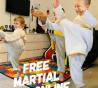 Karate Free Online