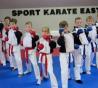 Dundee United Football Club – Karate Demo!